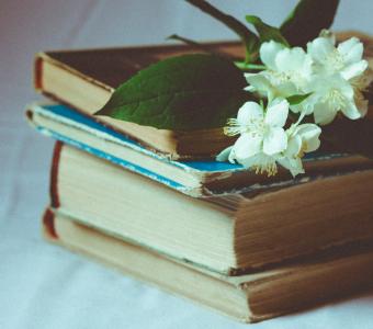 Spoiler: 5 livros marianos que você vai amar